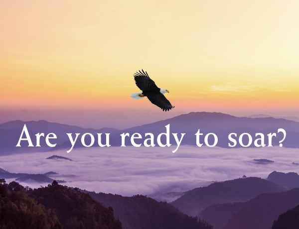 Are you read to SOAR?